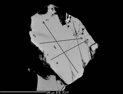 Mertieite-II crystal I (SEM back-scattered electron image).