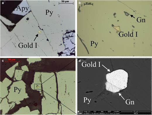 Photomicrographs of Gold I (encapsulate in sulfides): (a, b, c) taken under reflected light and (d) was taken by SEM (Py – pyrite; Apy – arsenopyrite; Gn – galena).