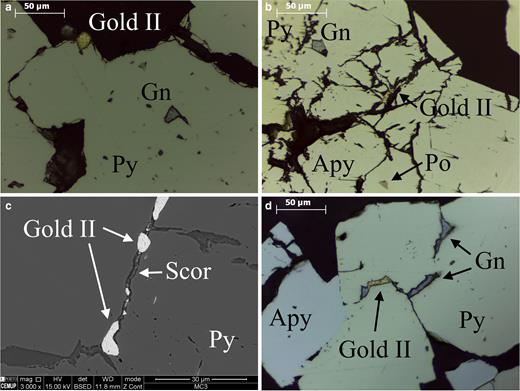 Photomicrographs of Gold II (in sulfides filling later fractures or in grain boundaries): (a, b, d) under reflected light and (c) SEM (Py – pyrite; Gn – galena; Apy – arsenopyrite; Po – pyrrhotite; Scor – scorodite).