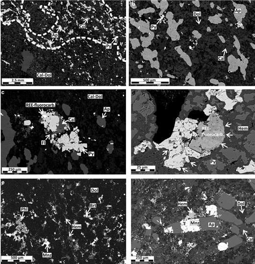 BSE-SEM images showing the mineralogical and textural changes as a result of rødbergitization in samples from the Bjørndalen transect of the Fen Complex. (a) Apatite-rich carbonatite domains in carbonatite in sample 15-82-FE. (b) Close-up of the texture of a primary carbonatite (sample 15-82-FE) with apatite showing a preferred orientation. The matrix is comprised of an intergrowth of calcite (brighter grey) and dolomite (darker grey). (c) REE fluorocarbonates associated with fluorite and pyrite in primary carbonatite (sample 15-82-FE). (d) Primary pyrite replaced by veins of secondary hematite. REE fluorocarbonates and baryte inclusions at the centre of the altered pyrite are partly replaced by hematite (white arrows). Altered part of sample 15-82-FE. (e) Texture of rødbergite matrix showing fine-grained dolomite with a fine dense network of hematite, baryte and monazite-(Ce) replacing dolomite along grain boundaries (sample 15-89-FE). (f) Texture of a rødbergite matrix similar to (d) showing dolomite-calcite matrix with a fine dense network of hematite along grain boundaries. Monazite-(Ce) is partly replacing apatite (sample 15-88-FE). Mineral abbreviations used: Ap – apatite, Cal – calcite, Phl – phlogopite, Brt – baryte, Col – columbite, Dol – dolomite, Fl – fluorite, Hem – hematite, Py – pyrite, Mnz – monazite-(Ce).