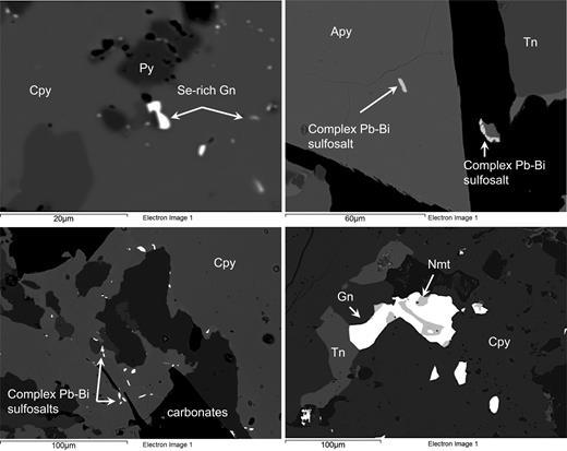 High-resolution SEM-BSE images depicting the occurrence of Se-rich galena (Gn) inclusion in chalcopyrite (Cpy), complex Pb–Bi and Bi–Se sulfosalts in arsenopyrite (Apy) and tennantite (Tn), and the occurrence of naumanite (Nmt) associated with galena.