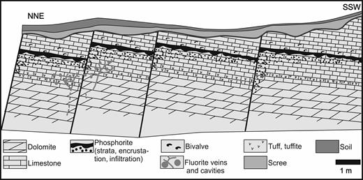 Schematic geological section of the Pécsely-11 exploration trench (modified after Kiss and Virágh, 1959).