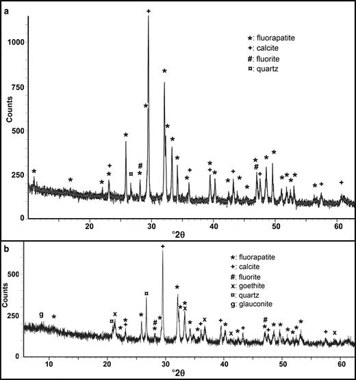PXRD spectra of the layered Triassic (a) and the nodular Cretaceous (b) phosphorites.