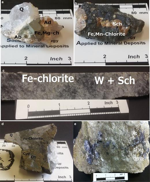 Selected samples of chlorite minerals studied: (a) sample from Santa Helena collected at –48 m: Q – quartz; Ad – adularia; Ab – albite; Fe,Mg-chlorite; (b) sample from Santa Helena collected from veins at –148 m: Sch – scheelite; FeMn-chlorite; (c) sample collected from the Santa Helena breccia structure (North Sto. António at –160 m): W – wolframite; Sch – scheelite; Fe-chlorite; (d) sample from the Santa Helena breccia structure collected at –176 m: cpy – chalcopyrite; chl-Fe-chlorite, Mu II – secondary muscovite; (e) sample from Venise collected at –110 m; Mo – molybdenite; Fe,Mg-chlorite.