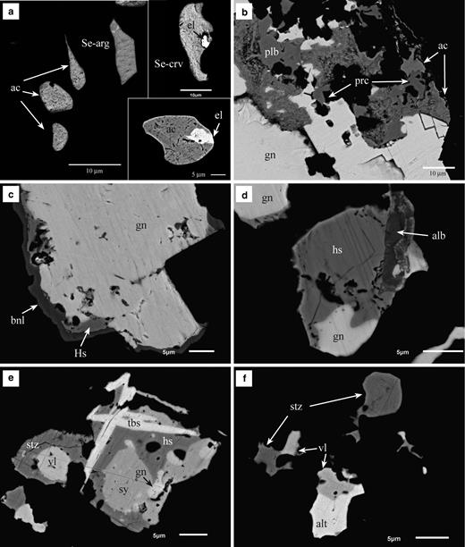 Back-scattered electron images (BSE) of samples shown in Fig. 6. (a) Rounded and irregular inclusions of acanthite (ac), Se-bearing argyrodite (Se-arg) and Se-bearing cervelleite (Se-crv). Some inclusions contain minute grains of Au-Ag alloy (el). The BSE image, bottom right, is from sample DDH36-191; the others are from sample DDH31-79.5. (b) Detail of Fig. 6b. Galena has been partially replaced by pearceite (prc) and polybasite (plb), which are also replaced by acanthite (ac) with a porous, dusty appearance. (c) Galena surrounded by hessite (hs) and benleonardite (bnl). Sample DDH31-79.5. (d) A small grain of alburnite (alb) associated with hessite and galena. Sample DDH31-79.5. (e) Complex aggregate of tellurobismuthite (tbs), hessite (hs), stutzite (stz), sylvanite (sy), volynskite (vl) and galena (gn). Sample DDH33-203. (f ) Irregular inclusions of tellurides in chalcopyrite including stutzite (stz), volynskite (vl) and altaite (alt) instead of galena. Sample DDH33-203.
