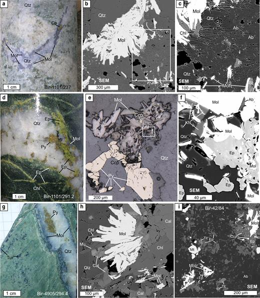 Molybdenite (Mol) from Birgilda: (a–c) sample Bir-1101/237, molybdenite nests intergrown with chlorite, albite (Ab) and biotite (Bi) in selvages of a quartz veinlet; (d–f) sample Bir-1101/291.2, molybdenite intergrown with pyrite, chalcopyrite, epidote (Ep), albite and K-feldspar (Kfs); (g,h) sample Bir-4905/294.4, molybdenite overgrown by calcite (Cal), muscovite (Mu) and chlorite; (i) sample Bir-42/84, molybdenite flakes in basalt altered to an albite, epidote assemblage with magnetite, titanite (Tit) and chalcopyrite. 'SEM' – scanning electron microscope images; (a,d,g) – hand specimens; (e) – reflected light images.