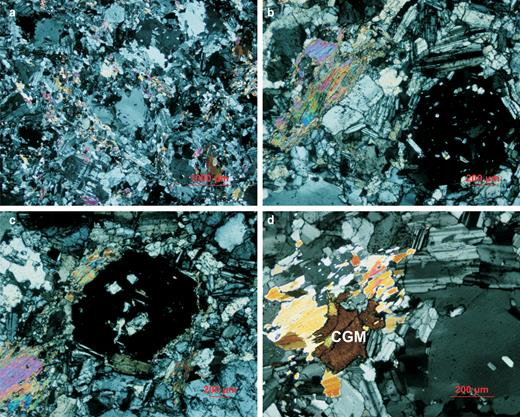 Transmitted light photomicrographs of the Penouta granite: (a) general view of the porphyritic texture; (b,c) details of the snowball texture of quartz; (d) columbite-group crystal (CGM) associated with muscovite.