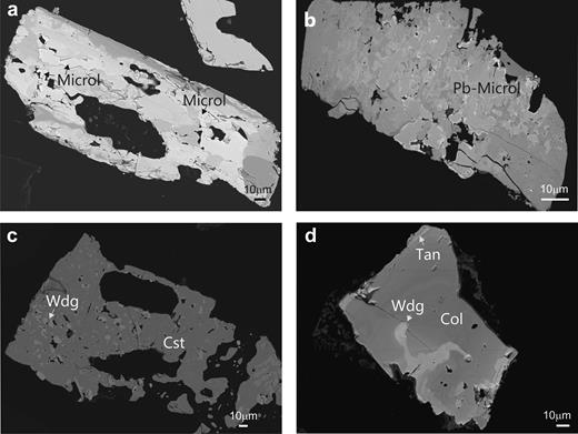 Back-scattered SEM images of Na-Ta oxides from the Penouta leucogranite: (a) columbite–tantalite crystal with microlite (Microl) enclosed (bright); (b) microlite replacement of columbite with bright rims composed of plumbomicrolite (Pb-Microl); (c) wodginite (Wdg) inclusions in cassiterite (Cst); (d) wodginite replacement in CGM, with a Nb-rich core (dark), and a Ta-rich rim (Tan) (bright).