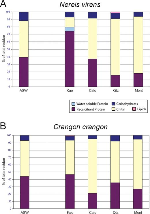 Chemical composition of Nereis and Crangon remains after 4 months of burial in differing sediment mineralogies and the control. ASW  =  artificial seawater; Kao  =  kaolinite; Calc  =  calcite; Qtz  =  quartz; and Mont  =  montmorillonite.