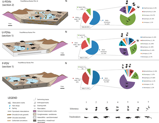 Tetrapod Footprint Paleoecology Behavior Taphonomy And Ichnofauna