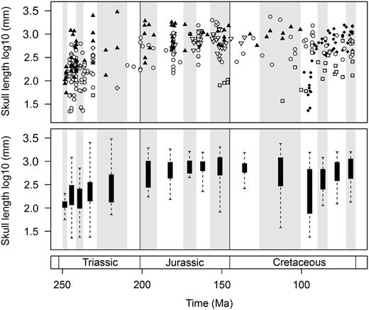 Temporal trends of marine reptile skull-size evolution. In the upper plot,                    log10 skull length for 354 marine reptile species is plotted at the                  midpoint of their stratigraphic range. Symbols are used to differentiate the major                  groups. Lower plot represents the same data expressed as box-and-whisker diagrams                  plotted at the midpoint of each time bin. Group symbols correspond to Figures 2 and 5.