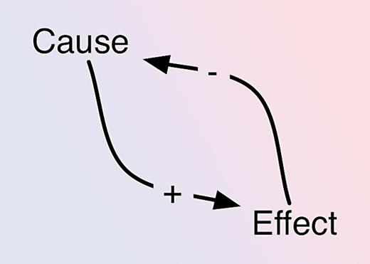 A very simple causal loop diagram. This will give a nonlinear response.