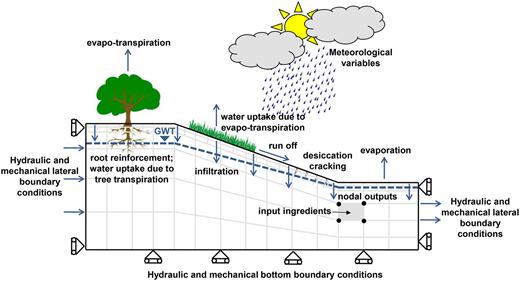Schematic slope model and potential slope–vegetation–atmosphere interaction phenomena. GWT, ground water table.