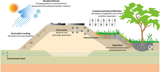 Schematic view of the soil–vegetation–atmosphere interactions (modified from Vardon 2015).