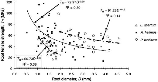 Relationship between root tensile strength (TR) and root diameter (D) (modified from Mattia et al. 2005).