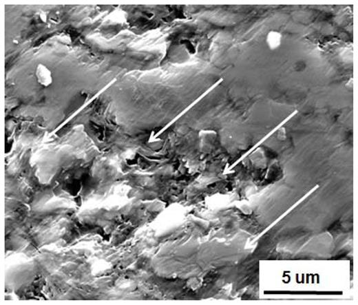 SEM image of a Utica shale sample where surface grinding has led to smearing and degradation of the surface especially those areas rich in clay.
