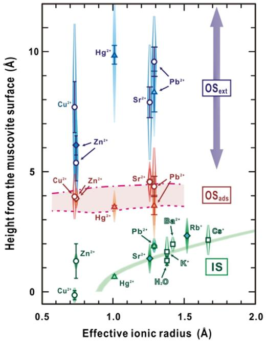 Average heights of distributions of ions adsorbed to a muscovite mica surface, measured using Resonant Anomalous X-ray Reflectivity. IS is inner-sphere, OSads is outer-sphere and OSext is an extended out-sphere complex. [Used by permission of the American Chemical Society, from Lee SS, Fenter P, Park C, Sturchio NC, Nagy NL (2010) Hydrated cation speciation at the muscovite (001)-water interface. Langmuir, Vol. 26, p. 16647–16651]