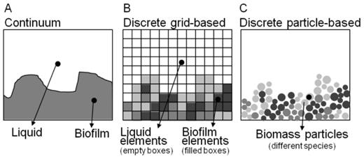 Biofilm growth and spreading models assume that the biofilm is either represented as a continuum (A) or as discrete quantities (B and C) [Used by permission of IWA Publishing, modified from IWA Task Group on Biofilm Modeling (2006), Fig. 3.12, p. 106].