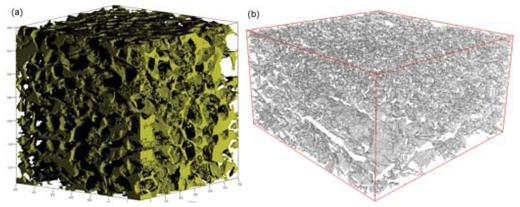 (a) 3-D rendering of the pore phase in natural Castlegate sandstone at image resolution of 1.67 μm [Used by permission of John Wiley and Sons, from Fredrich JT, DiGiovanni AA, Noble DR (2006) Predicting macroscopic transport properties using microscopic image data. Journal of Geophysical Research, Vol. 111, Fig. 7, p. B03201-10] and (b) 3-D reconstructed pore (white) topology over a sample volume of ~14 × 14 × 10 μm3.