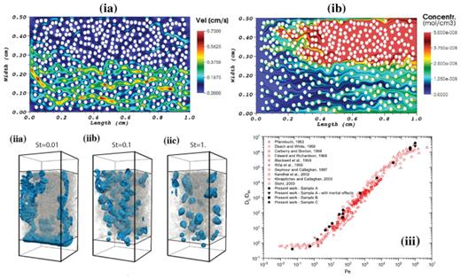 (ia) Absolute velocity magnitude, and (ib) total calcium concentration for a two-zone domain of heterogeneously packed calcite grains computed via an adaptive meshing CFD method [Used by permission of John Wiley & Sons, Inc., from Molins S, Trebotich D, Steefel CI, Shen C (2012), An investigation of the effect of pore scale flow on average geochemical reaction rates using direct numerical simulation, Water Resources Research, Vol. 48, Issue 3, doi: 10.1029/2011WR011404, Fig. 5]. (iia)–(iic) Distribution of the non-wetting phase in drainage accompanied by thermally-induced melting of the solid phase, for different melting efficiencies described by the Stefan (St) number. LB was used in performing these simulations [Used by permission of Cambridge University Press, from Parmigiani A, Huber C, and Bachmann O, and Chopard B (2011), Pore-scale mass and reactant transport in multiphase porous media flows, Journal of Fluid Mechanics, Vol. 686, p. 40–76, Fig. 8]. (iii) Comparison of predicted longitudinal dispersion coefficients (black dots), using the MMPS method, and experiments (red dots) for various Péclet numbers (=advection/ diffusion) [Used by permission of Elsevier Ltd., from Ovaysi S, Piri M (2011), Pore-scale modeling of dispersion in disordered porous media, Journal of Contaminant Hydrology, Vol. 124, p. 68–81, Fig. 7]