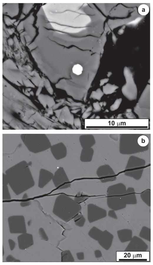(a) Back scatter electron micrograph depicting Pt–Ru–Fe nugget (bright phase at image center) included in compositionally zoned melilite (Allende CV3). Image courtesy of Dr Glenn MacPherson, Smithsonian Institution (USA). (b) Numerous refractory metal nuggets (white spots) enclosed in a type B1 CAI from the Allende meteorite. The equant dark gray minerals are spinel and the light gray phase is melilite. Image courtesy of Dr Daniel Schwander, University of Mainz (Germany).