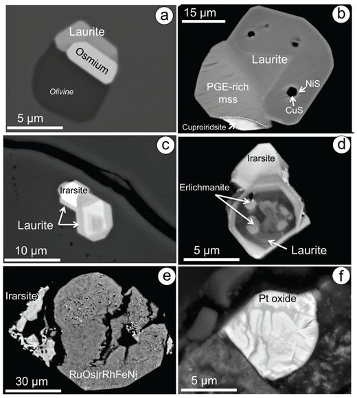 Images of PGM included in chromite from chromitites hosted in (a) the ultramafic complex of the Vizcaino Peninsula, Baja California Sur (Mexico), (b-e) the mantle of the Mayarí-Baracoa ophiolite belt in eastern Cuba and (f) in the silicate matrix of chromitite from the mantle-crust transition zone in the New Caledonia ophiolite. (a) Backscattered electron micrograph of a laurite and an Os-Ir grain at the edge of a silicate inclusion in chromite. (b) Backscattered electron micrograph of a composite grain made up of an intergrowth of zoned laurite with PGE-rich mss and cuproiridsite. (c) and (d) are grains of zoned laurite-erlichmanite intergrowth with irarsite (Monte Bueno chromite deposit; Gervilla et al. 2005; González-Jiménez et al. 2009b). (e) Backscattered image of partially desulfurized irarsite attached to a larger grain of a pseudomorphed Ru-Os-Ir-Rh-Fe-Ni alloy after desulfurization of laurite in a chromite crack (Tres Amigos Mine, Mayarí-Baracoa Ophiolite, Cuba). (f) Backscattered image of Pt-oxide after cooperite (Ouen Island; González-Jiménez et al. 2011a).
