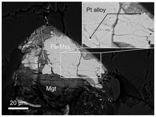 Images of Pt-alloy micronuggets in Fe-rich mss and magnetite (Mgt), interstitial to olivine in a mantle (lherzolite) xenolith from the Calatrava Volcanic Field, central Spain.