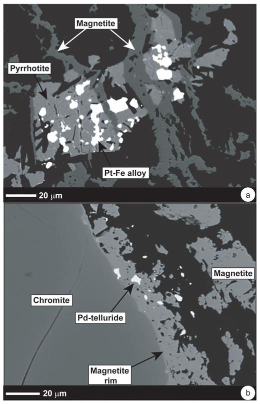 Textural relationships of PGM illustrated in backscatter electron micrographs of the Stillwater J-M Reef as follows: (a) Irregularly shaped bright Pt–Fe alloy grains (example arrowed) are included in pyrrhotite and crosscut by ~10 μm thick secondary magnetite veinlets (arrowed). (b) Sieve-textured magnetite rim (on Cr-spinel crystal) containing Pd-telluride inclusion. These images have previously been published in Godel and Barnes (2008b) as their Figures 6d and 8c, and are reproduced here with the permission of the authors and under the Fair Use Provision of Economic Geology.