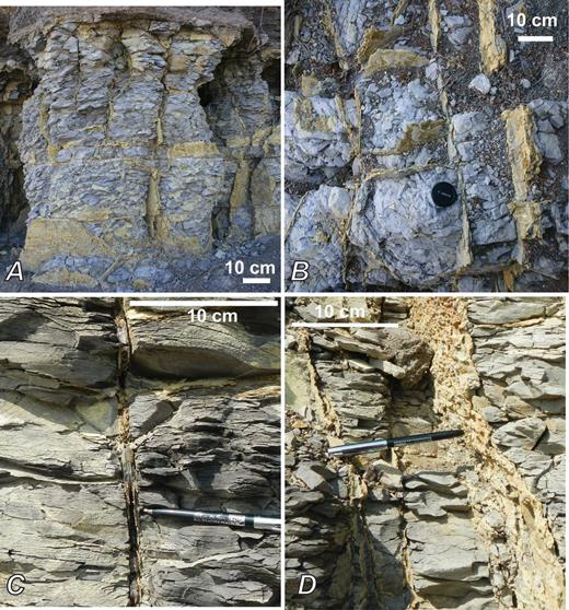 Photographs of the BPVA. Bar scales approximate. A, View of veins in sub-vertical cliff face between sites 1 and 2 in Figure 1. B, Vertical view of typical vein network geometry (same outcrop as in A). Note 55 mm camera lens for scale. C, Close up of vein at site 5 in Fig. 1, with core of selenite, and thin margin of yellow jarosite. D, Same outcrop as C, but near more highly weathered margin, with vein composed of all jarosite and with a more irregular margin.
