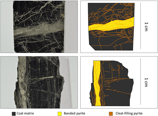 Photographs and schematics of banded (yellow) and cleat-filling (orange) pyrite in Greenburn coals.