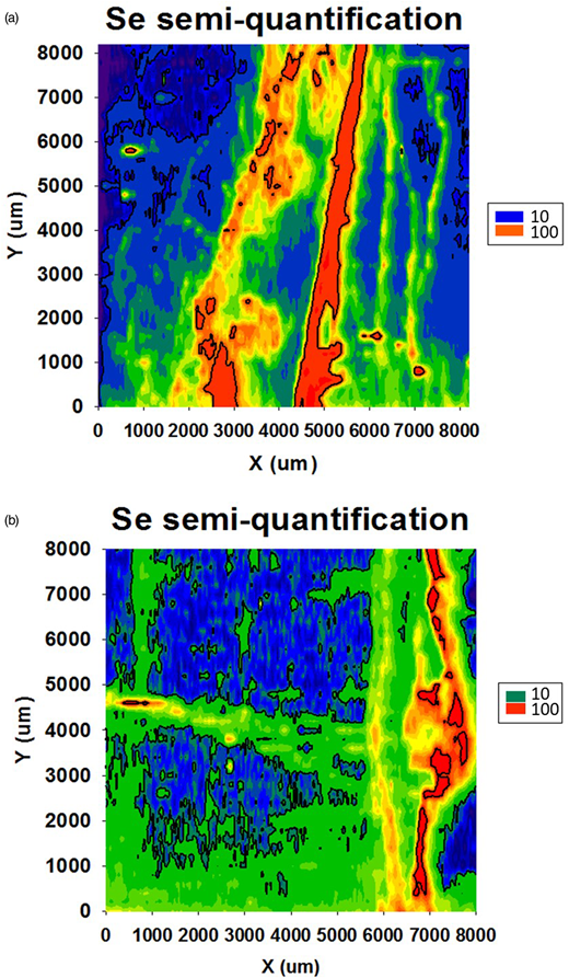 Semi-quantification of Se content of pyrite and coal in (a) 9300 Lime and (b) 6900 K. Main Rider coals by LA-ICP-MS.