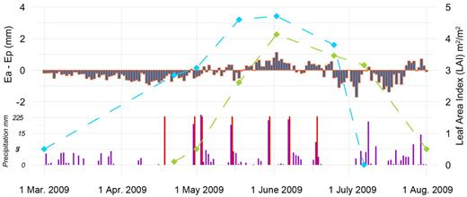 Voulund Farm: difference between actual (Ea) and Makkink potential evapotranspiration (Ep) (evapotranspiration deficit) compared with daily precipitation, irrigation (red bars), and average LAI for the winter barley and spring barley fields.