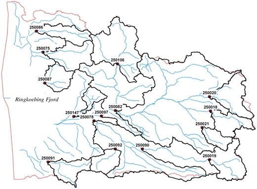 Delineation of the Skjern River catchment to 15 subcatchments based on the existing stream discharge stations.