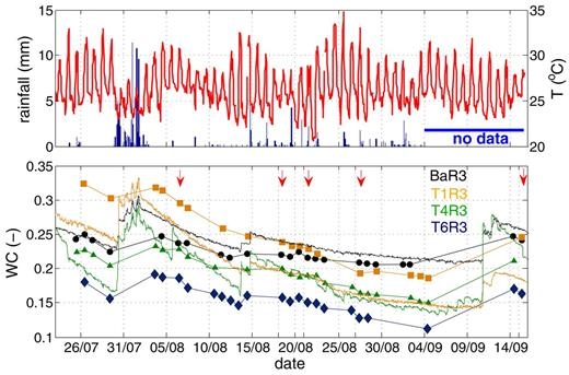 Hourly rainfall (mm) [blue] and air temperature (°C) [red] during the measurement campaign (top) and average electrical resistivity tomography (ERT)-measured soil moisture content of the first 0.5 m of the soil profile in the ERT plane for BaR3, T1R3, T4R3 and T6R3 (lines with markers) together with the average soil moisture measured by time domain reflectometer [(TDR), (fine lines, bottom)] as an indication of the measured soil moisture changes. The red arrows indicate timeframes later used in Fig. 8.