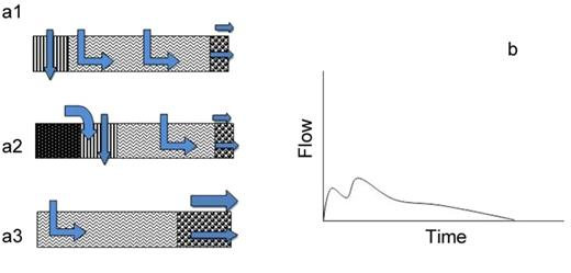 (a1, a2, and a3) Perceptual flow models of hillslope class 1 and (b) anticipated hillslope hydrograph.