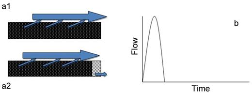 (a1 and a2) Perceptual flow models of hillslope class 2 and (b) anticipated hillslope hydrograph.