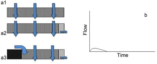 (a1, a2, and a3) Perceptual flow models of hillslope class 3 and (b) anticipated hillslope hydrograph.