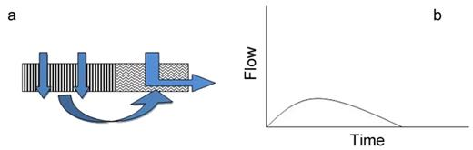(a) Perceptual flow model of hillslope class 4 and (b) anticipated hillslope hydrograph.