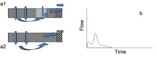 (a1 and a2) Perceptual flow models of hillslope class 6 and (b) anticipated hillslope hydrograph.