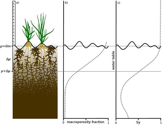 Schematic illustration of the soil–vegetation transition. It is focused on the vertical soil heterogeneity and therefore microrelief is only gently indicated: (a) example sphagnum soil profile and increasing pore sizes from bottom to top, with mean surface elevation (μ) and the optimized transition between surface storage and soil (μ + Δμ); (b) increasing macroporosity from bottom to top; and (c) the influence of surface storage on the specific yield (Sy).