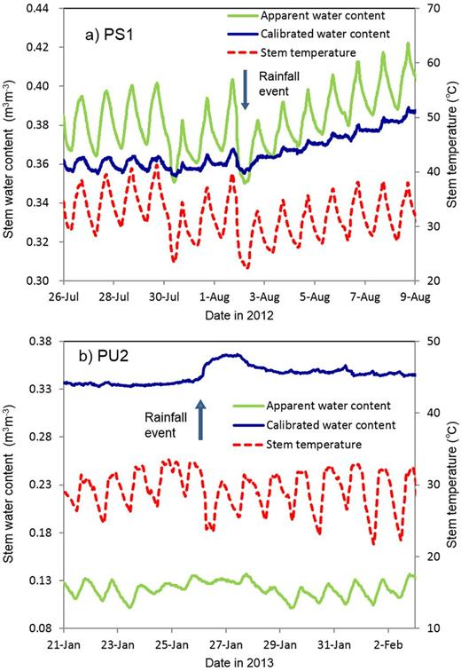Comparisons of the calibrated stem water content (θst) with the apparent stem water content (θp) and stem temperature for the (a) Prosopis juliflora PS1 tree at the Sudan site (26 July–9 Aug. 2012) and (b) Prosopis pubescens PU2 tree at the US site (21 Jan.–3 Feb. 2013).