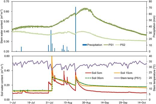 Variations in stem water content (θst) of two mesquite (Prosopis juliflora) trees (PS1 and PS2), soil water content, daily mean stem temperature of PS1, and daily precipitation from July (the beginning of the rainy season) to October (the end of the rainy season) in 2012 at Soba, Khartoum, Sudan.