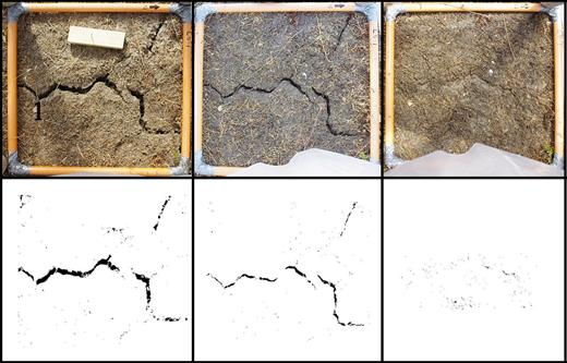 Example of the crack imaging routine used to estimate crack area as the soils were wetted up. On the top row are the original images, while the bottom row shows the images after segmentation into crack vs. soil. Note that the orange frame shown in the top row has dimensions of 50 by 50 cm.