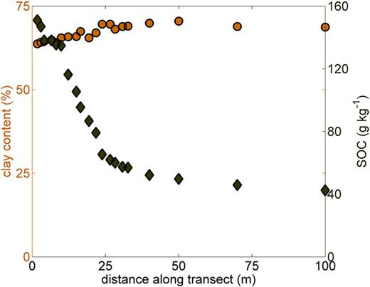 Variations in clay and soil organic C (SOC) content along the sampling transect.