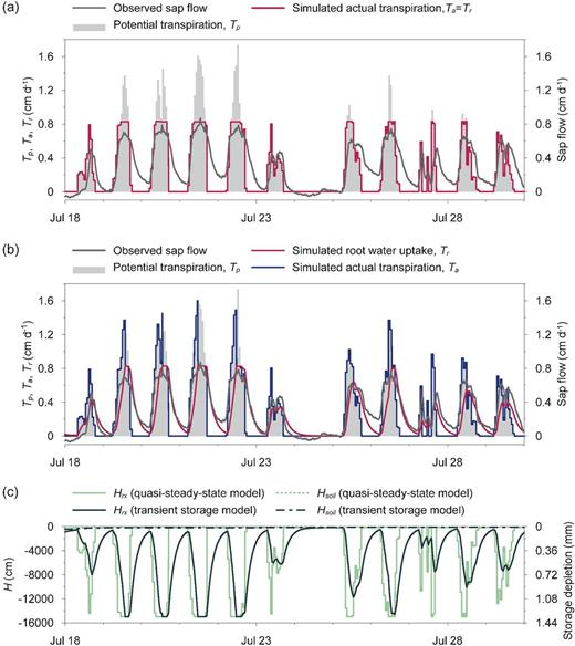 The results of transpiration stream modeling based on (a) a quasi-steady-state assumption and (b) a constant whole-plant capacitance approach (transient storage model), and (c) the simulated variations of root xylem water potential, Hrx, and the vertically averaged soil water potential, Hsoil. The secondary vertical axis relates Hrx, predicted with the transient storage model, to the plant water storage depletion (no storage change is assumed in the quasi-steady-state model).