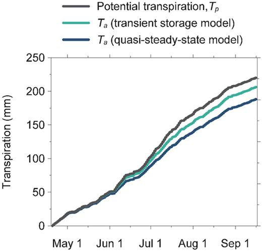 Simulated cumulative actual transpiration rates, Ta, for quasi-steady-state and transient plant storage approaches compared with the cumulative potential transpiration rate, Tp.