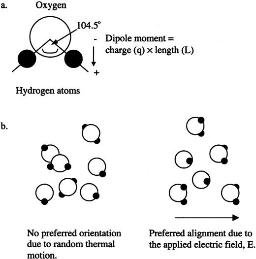Review of advances in dielectric and electrical conductivity a the dipole moment of a water molecule b water molecules fandeluxe Choice Image