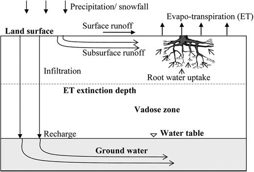 Evaluating Interactions Between Groundwater And Vadose Zone Using