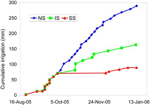Cumulative irrigation for the no-stress (NS), intermediate-stress (IS) and severe-stress (SS) treatments.
