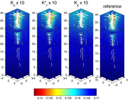 Cross-sections of the three-dimensional soil water content distribution after 7 d with constant water flux at the root collar Jc = −10 cm3 d−1 (Collar Boundary Condition 2, Table 1). Comparison between the reference (extreme right) and 10-fold increase of xylem conductivity(Kx), radial conductance (Kr*), and saturated soil conductivity (Ks). Root architecture is shown in white.